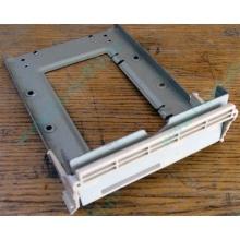 Заглушка для корзины SCSI дисков 55.59903.011 для серверов HP Compaq (Хасавюрт)
